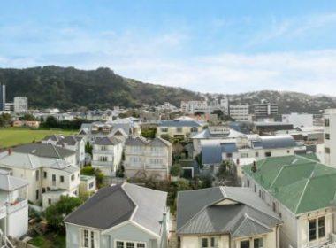 Wellington houses