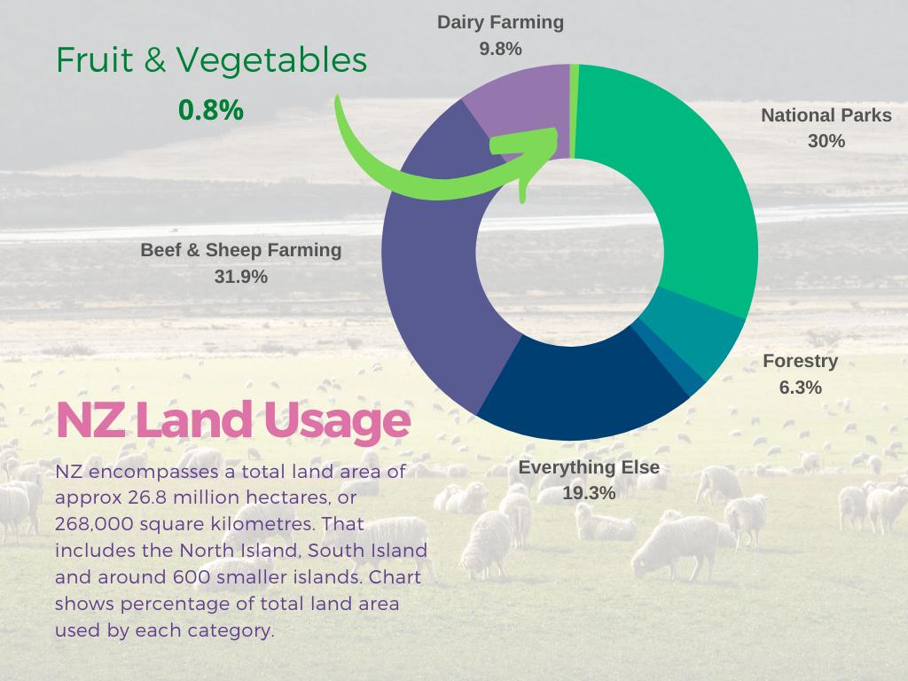 NZ Land Usage