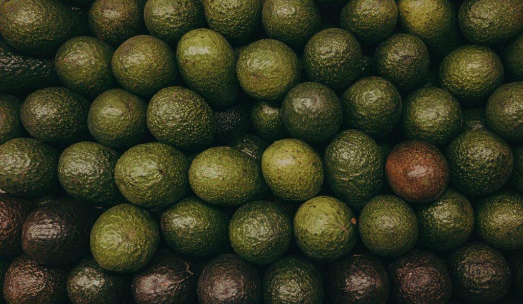Avocados - plant based diet